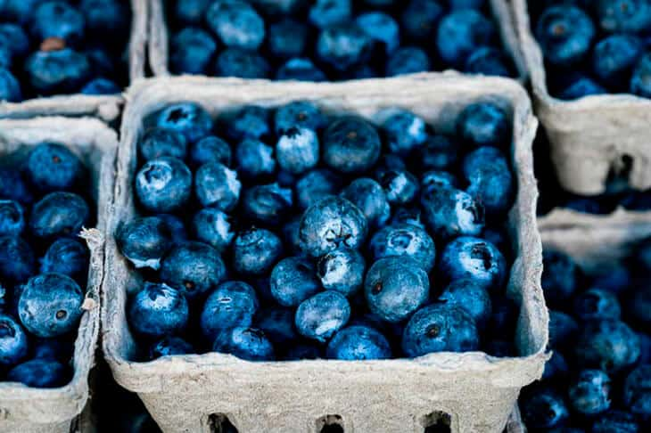 Blueberries in a grey punnet