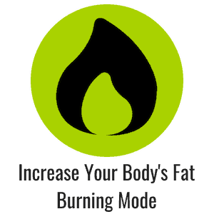 Green icon with a flame representing fat burning